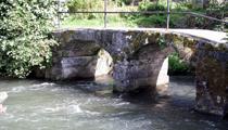 paysage-rivière-210